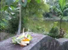 Offering at Royal Temple Bali